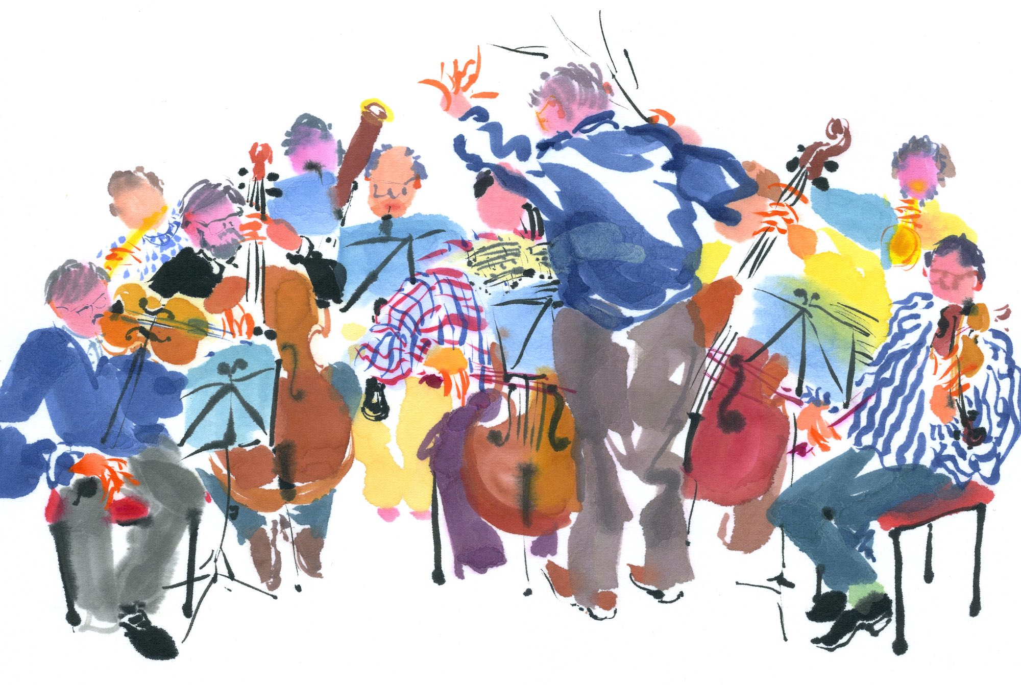 Chamber Orchestra image, © Mary Woodin. Kindly reproduced with permission